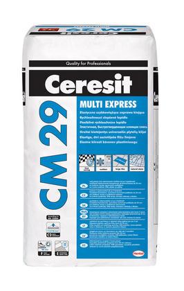 CM29.jpg